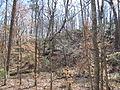 Kings Mountain National Military Park - South Carolina (8558887424) (2).jpg