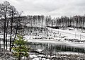 Kolomensky District, Moscow Oblast, Russia - panoramio (34).jpg