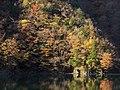 Komadate, Toyone, Kitashitara District, Aichi Prefecture 449-0402, Japan - panoramio (2).jpg