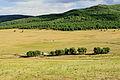 Krajobraz w Parku Narodowym Gorchi-Tereldż 28.JPG