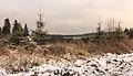 Krenkeltal Rothaarsteig in Sauerland panorama 01.jpg