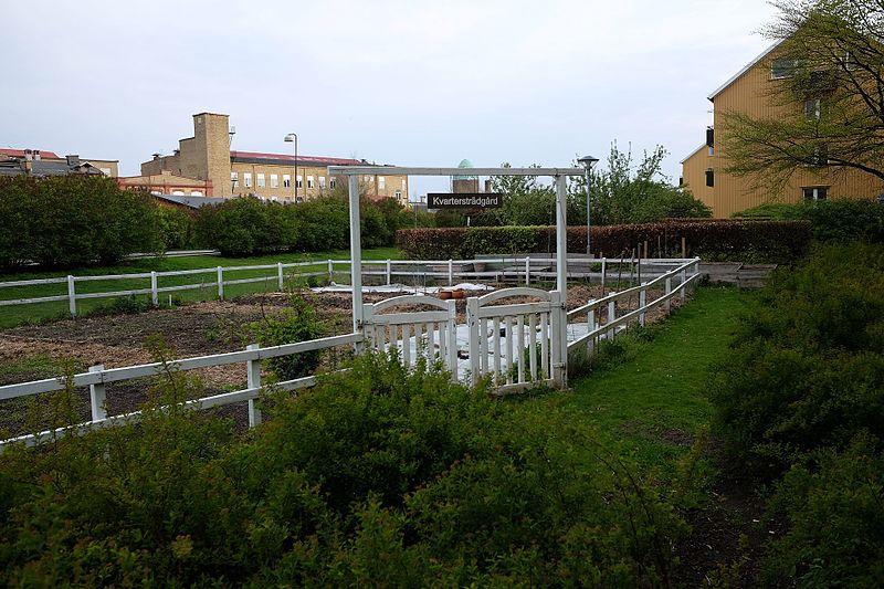 File:Kvartersträdgård.jpg