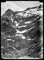 L'ivó de Arriel Bajo amb muntanyes nevades.jpeg