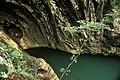 Lacu Dracului.jpg