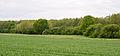 Lage - 2015-05-17 - LIP-009 Hardisser Moor (6).jpg