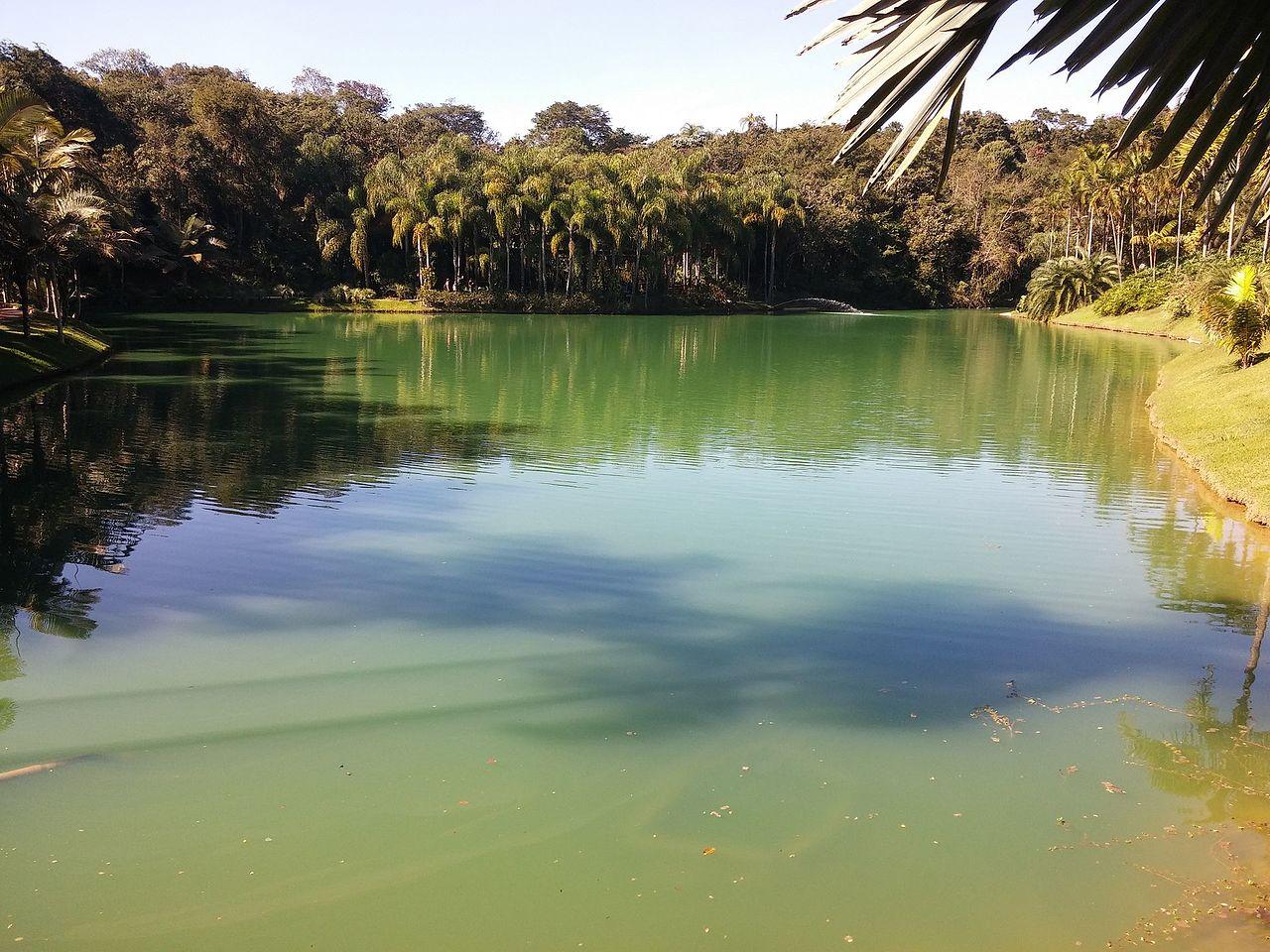 Lagoa do Parque do Inhotim - Brumadinho