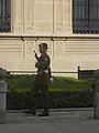 Laika ac Palace Guard, Luxembourg (6290136094).jpg