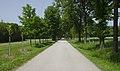 Lainzer Tiergarten (1) IMG 1515.jpg