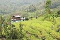 Landscape of Sikkim 03.jpg