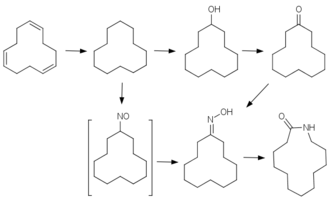 Cyclododecane - Formation of laurolactam