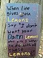 Lemons (8098273480).jpg