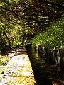 Levada 25 Fontes, Madeira, Portugal, June-July 2011 - panoramio (24).jpg