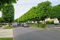 Lieusaint - 2019-05-07 - IMG 1047.jpg