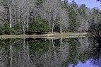 Little Beaver State Park WV 2 LR.jpg