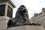 London - Nelson's Column (2).jpg