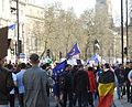 London March Euro Demo 2948c.jpg