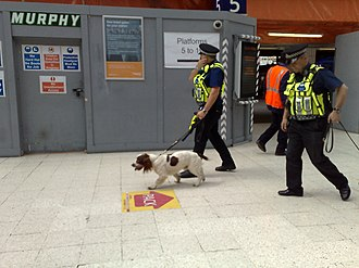 British Transport Police - BTP officers patrolling with dogs at Waterloo station