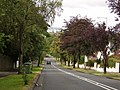 Looking downhill on Pendicle Road - geograph.org.uk - 515042.jpg
