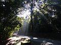 Luzes da Pedra Grande.jpg