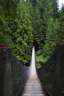 Simple Suspension Bridge Wikipedia