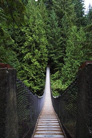 Simple suspension bridge -  Lynn creek, British Columbia