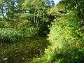 Mündung des Glasowbaches - panoramio.jpg