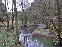 Rakovnický potok nedaleko Křivoklátu a Městečka