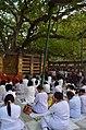 Mahabodhi Temple Complex, Bodhgaya (8717523666).jpg
