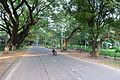 Main Road - IIT Campus - Kharagpur - West Midnapore 2015-09-28 4519.JPG