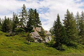 Mallnitz Tauerntal Jamnigalm 20190805 04.jpg