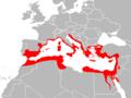 Mapa Hemidactylus turcicus.png