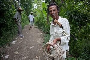 Indo-Haitians - Image: Marabou