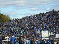 Marche bleue 2010.jpg