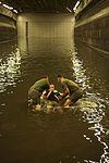 Marines and sailors get baptised aboard the USS Makin Island 141121-M-HU038-609.jpg