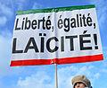 Marriage equality demonstration Paris 2013 01 27 01.jpg