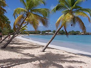 French West Indies - Les Salines in Martinique