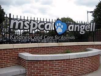 Humane society - MSPCA-Angell in Boston, Massachusetts was founded in 1868 and is the second oldest humane society in the United States