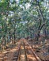 Matheran Rail Track.jpg