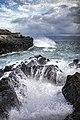 Maui (14924125764).jpg