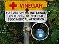 Medicinal Vinegar.jpg