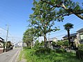 Meijigawa-Ryokudo-3.jpg