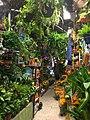 Mercado colorido.jpg