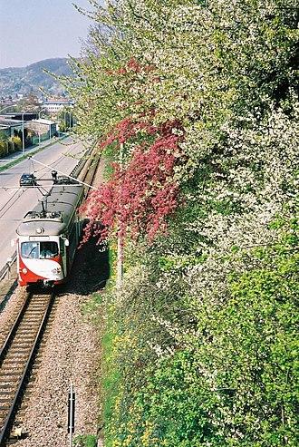 Upper Rhine Railway Company - Weinheim, near the Rosenbrunnen stop