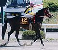 Midnight Bet 20000505R1.jpg