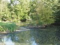 Moat at Moreton Farm, near Ford - geograph.org.uk - 46689.jpg