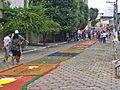 Montagem dos tapetes de Corpus Christi da Paróquia São Sebastião no bairro dos Professores em 2015, Coronel Fabriciano MG.JPG