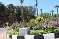 Montazah Garden 00 (53).JPG