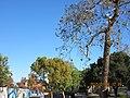 Monterey Park, CA, USA - panoramio (389).jpg