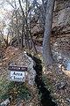 Montezuma Well - 37782758035.jpg