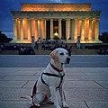 Monumental Dog Historic Register 66000030.jpg